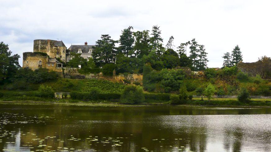 Weinbau an der Loire