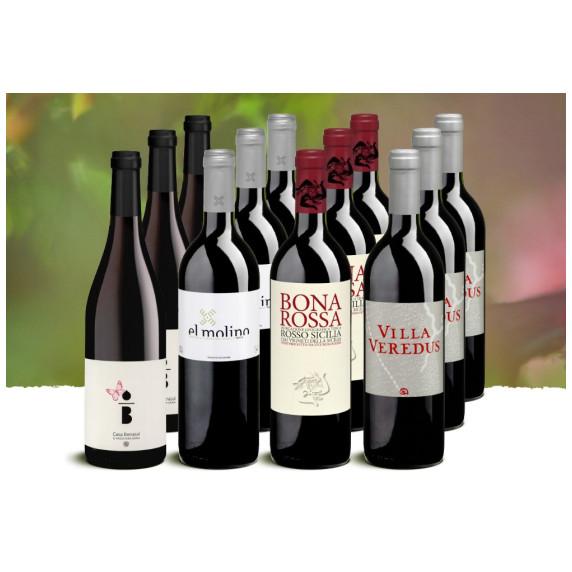 Probierpaket «Fruchtige Rotweine»