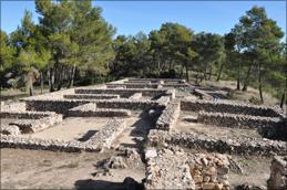 Direkt über den Weinbergen von Pago Casa Gran liegen die Überreste einer alten Iberer-Siedlung.