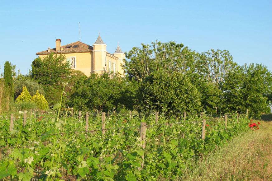 Das Château eignet sich hervorragend für erholsame Ferientage in der wilden Provence.