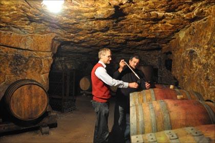 Bevor verschiedene Weine zu einer Cuvée assembliert werden, werden sie direkt im Keller einzeln verkostet.