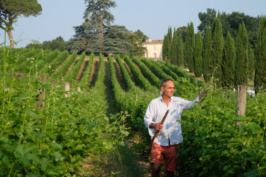 Christophe Piat gelingen aus ökologisch vorbildlichen Rebbergen Weine mit einem unglaublichen Preis-Genuss-Verhältnis.