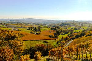 Wein- und Genussreise Piemont (2. Termin)