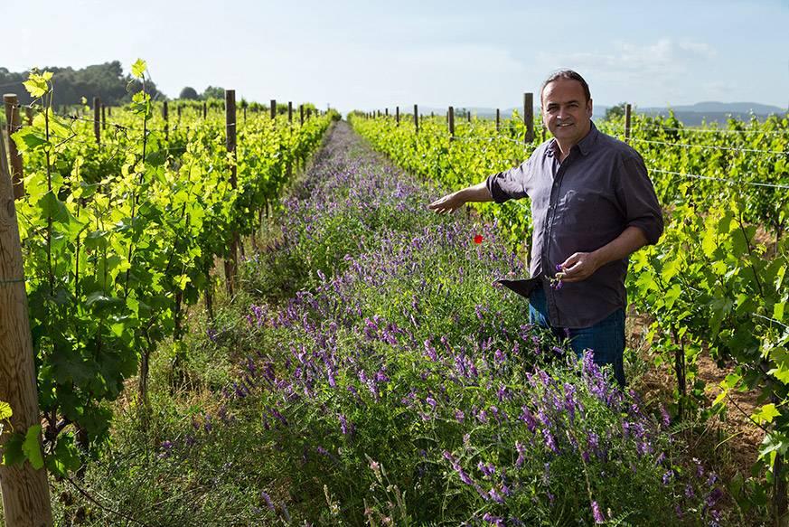 Josep Maria Albet i Noya hat dem biologischen Weinbau in Katalonien zum Durchbruch verholfen.
