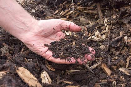 Ein qualitativ hochwertiger Kompost hilft, Stoffkreisläufe zu schliessen und ermöglicht eine effektive Verbesserung der Bodenstruktur und damit der Fruchtbarkeit.