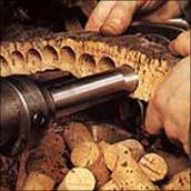 Kork, ein geniales Naturprodukt, welches mehrmals rezykliert und für andere Anwendungsbereiche wieder verwendet werden kann.