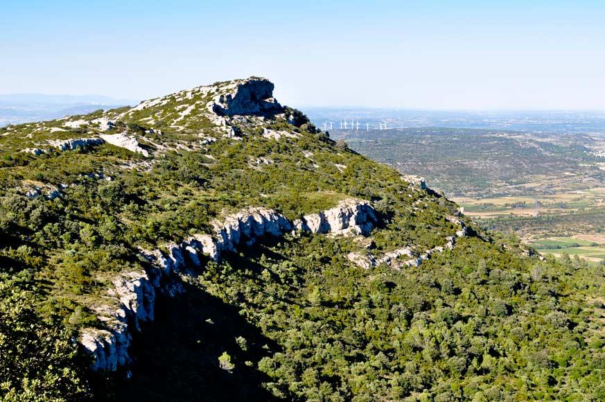 Das Weingut der Familie Lignères liegt am Fusse des Montagne d'Alaric.