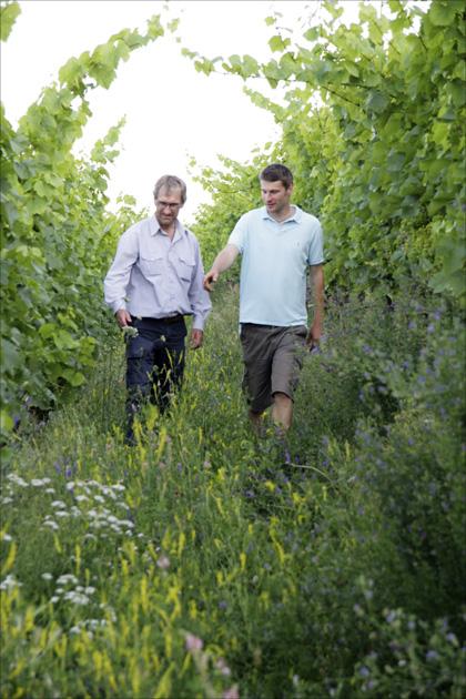 Da gerät selbst Delinat-Weinexperte Emil Hauser (links) ins Staunen: Winzer Alexander Pflüger sorgt in seinen Weinbergen für üppiges Grün.