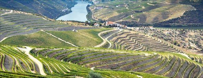 douro-portugal.jpg