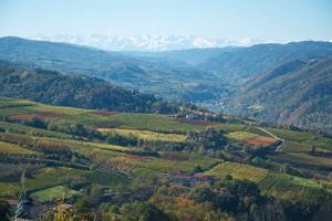 Wein- und Genussreise Piemont