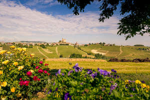 Wein- und Genussreise Piemont Primavera