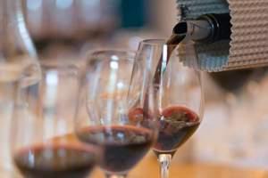 Rebsorten-Kurs: Typisch Merlot, Chardonnay & Co.