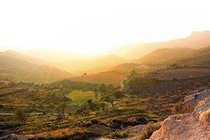 Wein- und Genussreise Südfrankreich