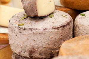 Themendegustation: Wein&Käse