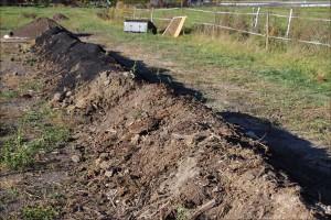 Kompost und Biokohle