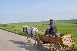Bauernfuhrwerk in Bulgarien
