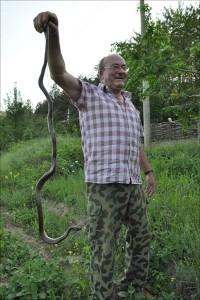 Schlangenfaenger