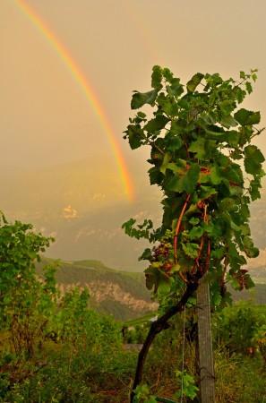 Regenbogen: «Schönes Licht ist nicht nur glänzend und strahlend, sondern auch rasch vergänglich. Dieser Regenbogen dauerte nur ein paar Sekunden.»