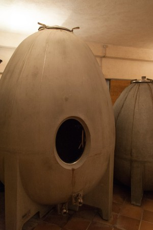Raúl Ripa vom spanischen Weingut Quaderna Via: «Ich schätze am Betontank seine hohe Temperaturstabilität.»