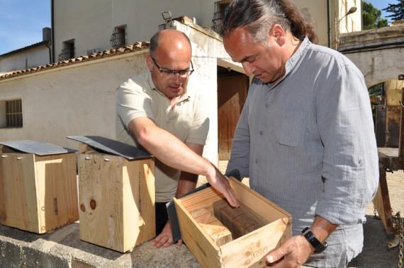 Nistkästen für Fledermäuse bei Albet i Noya