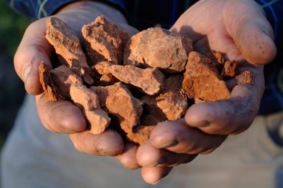 Eines der Geheimnisse für guten Wein liegt in mineralhaltigem Gestein und lebendigen Böden.