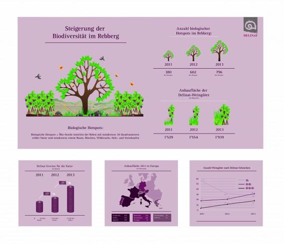 Die Infografik zeigt anschaulich, worum es geht: Die Steigerung der Biodiversität im Rebberg.