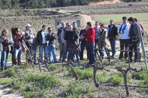 Delinat-Winzerseminar in Spanien: Von der Theorie in die Praxis