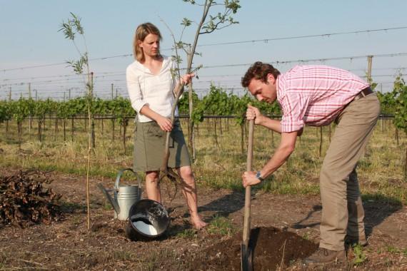 2013 konnte das Weingut Meinklang mit 3 Schnecken für höchste Biodiversität ausgezeichnet werden.