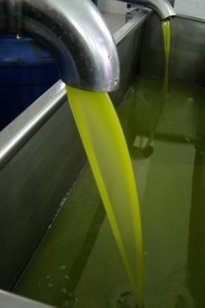 fliessendes Olivenöl