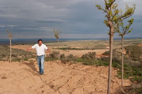 Dürreperiode in der Rioja