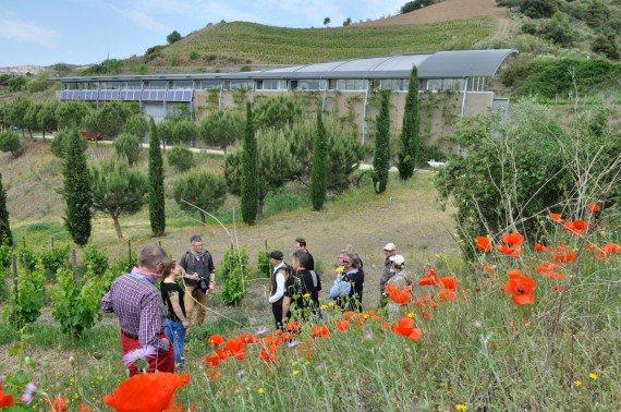 Staunen über die reiche Biodiversität auf Mas Igneus