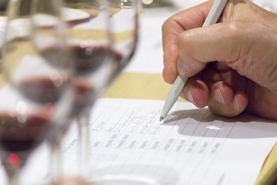 Helfen die Notizen, den Delinat-Wein zu erkennen?