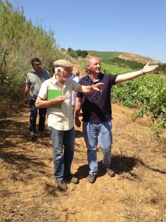 Massimo de Gregorio erklärt Rolf , wo die Grenzen des 3-Schnecken-Rebbergs verlaufen, im Hintergund eine natürliche Hecke aus Schilf.
