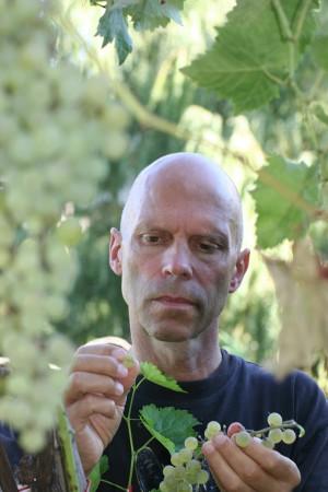 Delinat-Chef Karl Schefer