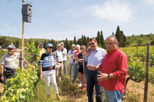 Josep Maria Albet i Noya zeigt stolz seine Weinberge mit grosser Biodiversität.