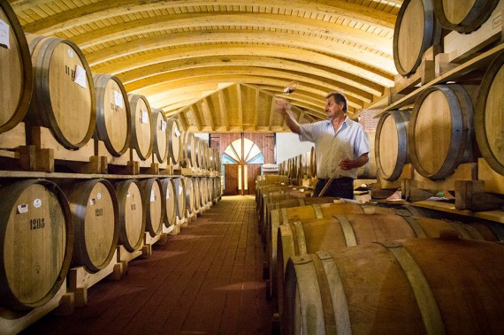Natalino Fasoli in seinem Barrique-Keller.