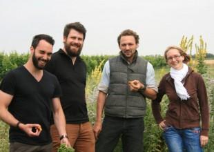 Die Kundenberater mit Werner Michlits vor einem einem Biodiversitäts-Hotspot im Weingut Meinklang (v.l. Kevin Benz, Paolo Mira, Werner Michlits, Naemi Ilg)