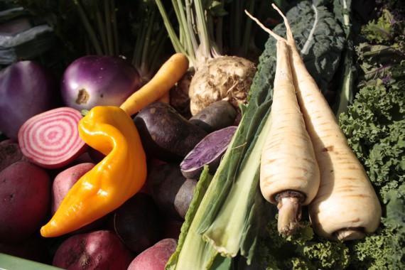 Gemüse Vielfalt