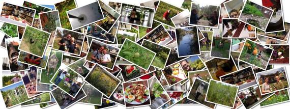 100 Feste für die Biodiversität
