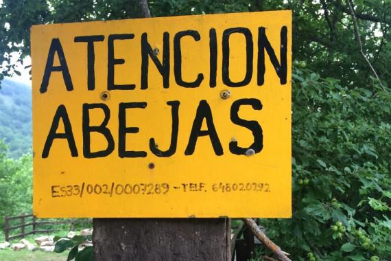 Atencion Abejas - Vorsicht Bienen!