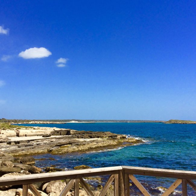 Bestes Wetter auf Mallorca