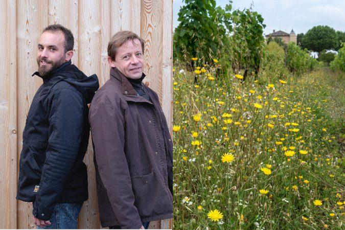 Erik Bergmann (links) löst Antoine Kaufmann als Winzer auf dem Delinat- Modellweingut in der Provence ab.
