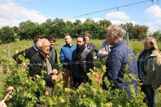 Das Kundenberater-Team im Weinberg, links vorne Leonardo Salustri