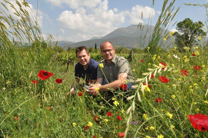 Winzer Apostolos Spiropoulos und Weineinkäufer David Rodriguez