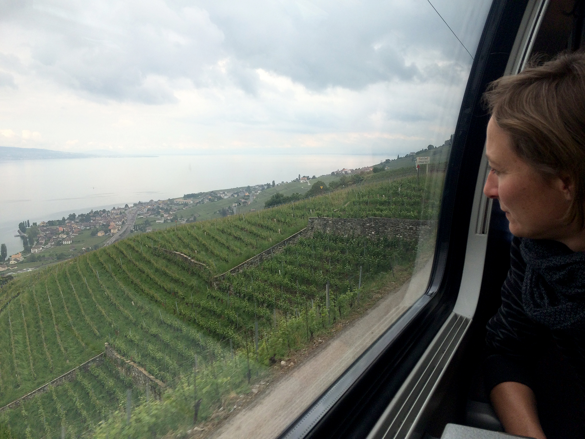 Zugfahrt mit Aussicht auf die Rebberge am Genfersee