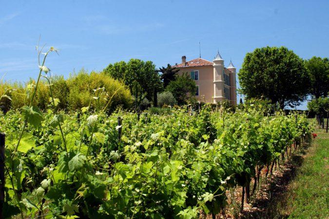 Versuchs- und Modellweingut Château Duvivier in der Provence.