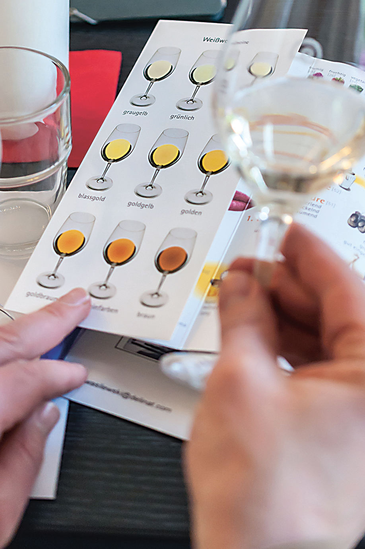 Die Broschüre «Weine degustieren – leicht und spielend» ist im Buchhandel für CHF 14.90 (€ 9.90) erhältlich.