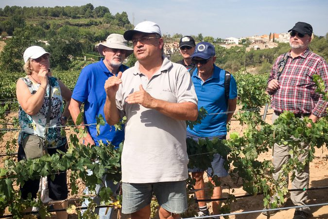 Gäste von Delinat geniessen eine persönliche Weinbergs-Führung durch Josep Albet i Noya.