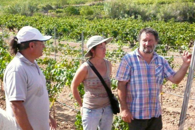 Der Schweizer Rebenzüchter Valentin Blattner (rechts) hilft auf dem Weingut Albet i Noya bei der Selektion widerstandsfähiger Traubensorten.