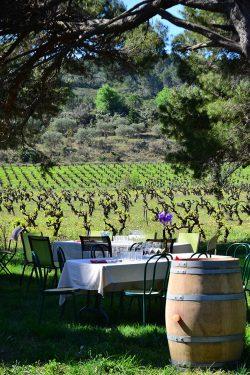Picknick beim Weingut der Familie Lignères.